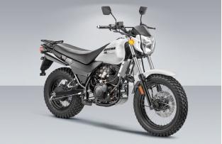 Мотоцикл Десна 220 Фантом